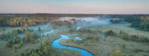 Swamps in Belarus